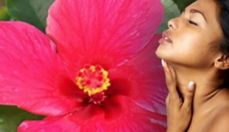au quotidien... Huiles essentielles & de massage, le bien-être par les plantes